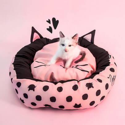 gatos-fofos