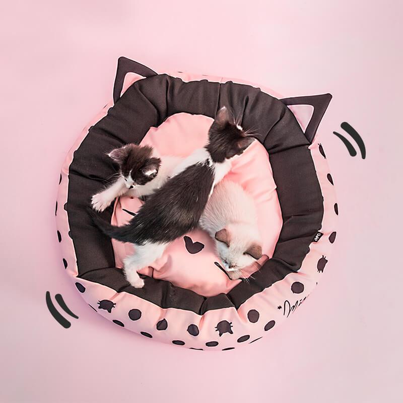 cama-gatinha