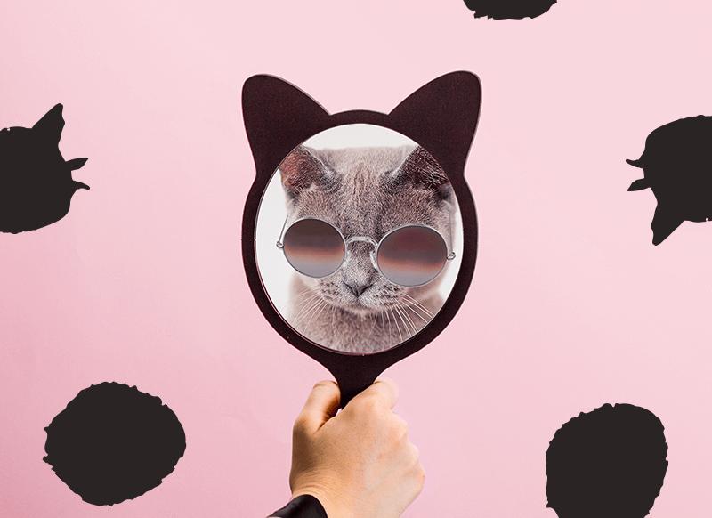 Qual #selfielina mais te representa? Responda essas 5 perguntas e descubra!